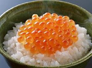 namasujiko (1).JPG