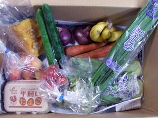 野菜宅配 激化人気が!