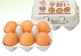 ttl_popular_egg_02.jpg