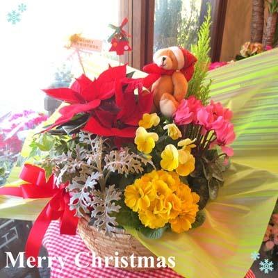 Christmas (3).jpg