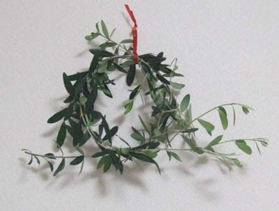 Christmas lease (3).jpg