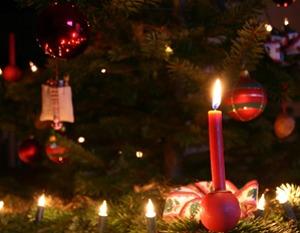 北欧 クリスマスツリー
