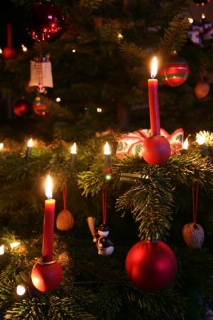 Christmas ornament (7).jpg