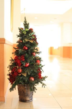 Christmas tree (1).jpg