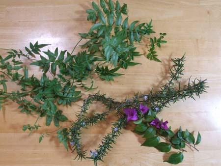 Christmas wreath (2).JPG