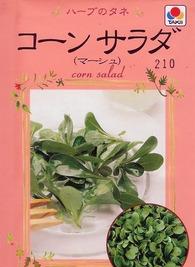コーンサラダのプランター栽培|病気に強く栽培も簡単!