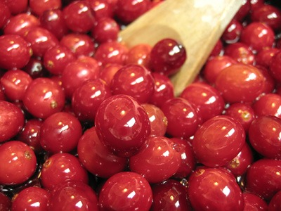Cranberry (15).jpg