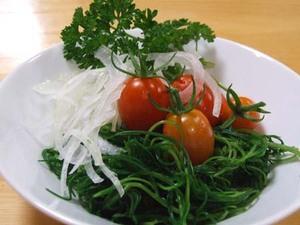 オカヒジキのレシピ|栄養高く、色と歯触りが最高!