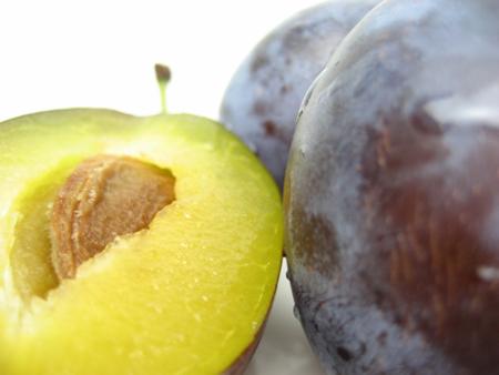 Prunus.JPG