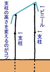 ameyokesiki (2).jpg