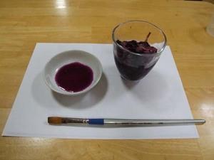 アサガオの色水の作り方、絵も描こう!