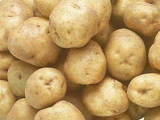食用のジャガイモをタネイモに栽培できますか?