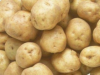 食用のジャガイモをタネイモに栽培できる?