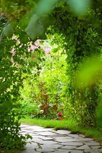 花壇 種類 画像つき