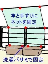 goya-planterB.jpg