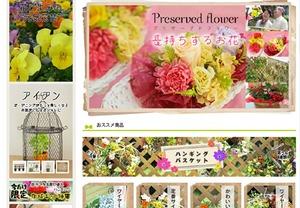 花ごよみ-四季のハンギング専門店|寄せ植え用苗セット