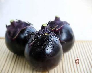 京野菜の苗が人気、育てやすく美味!