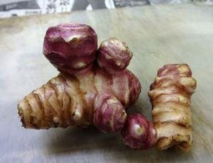 キクイモの育て方|病害虫に強い健康野菜