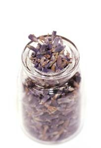 lavender (2).jpg