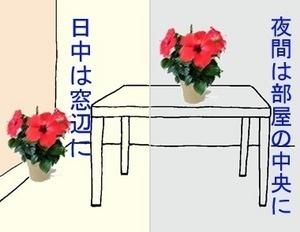 okibasyo-thumbnail2.jpg