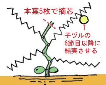 prince melon.jpg