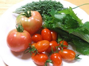 スイカ、メロン、トマト収穫|2014年7月下旬