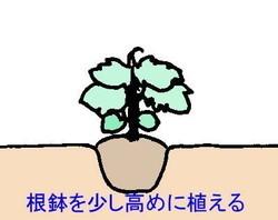 tesyoku (2).jpg