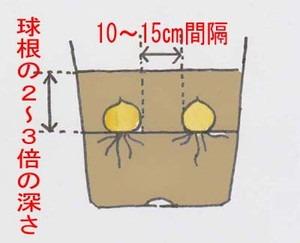 yurine (1).jpg